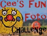 042114-cffc Cee's Fun Foto Challenge
