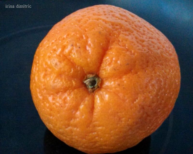 Weekly Photo Challenge: Orange (1/4)