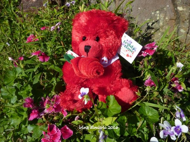 P1250641-001 Fuzzy Wuzzy Valentine