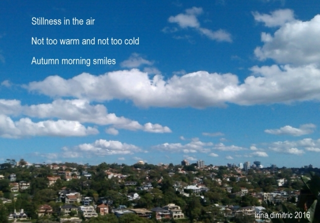 Autumn in Sydney (haiga)